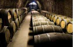 Saint-Emilion wine-tasting weekend