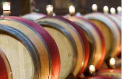 Découverte du vin sur un week-end