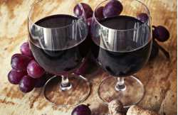 Weekend to discover oenology