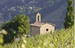 Week-end chez un vigneron Hermitage