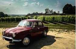 Touraine vineyard break