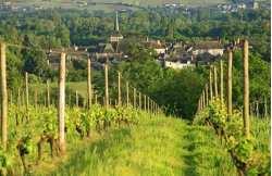 Nature getaway in Anjou
