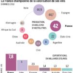 L'avenir de la viticulture française en question