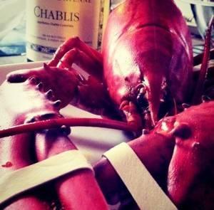 homard rôti chablis