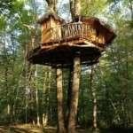 Expérience de tourisme insolite dans les cabanes de la Romaningue