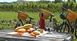 pique nique vélo vignes