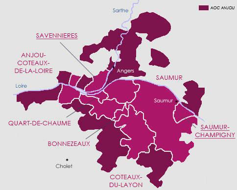 Anjou Saumur vignoble