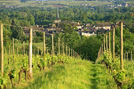 Noel cadeau route des vins vinotrip