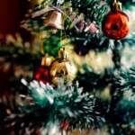 Quel est le budget vin des Français à Noël ?