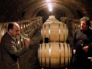 Dégustation Champagne Selosse