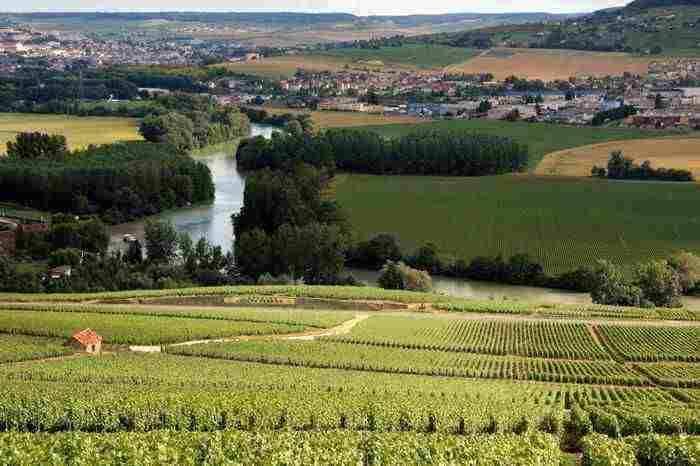Oenotourisme dans les vignobles de Champagne