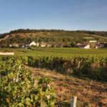 Route des vins en Côte de Nuits