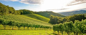 Un week-end en amoureux en Bourgogne