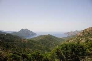 Découvrez la route des vins de Corse