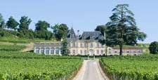 Dégustation vin bio Bordeaux