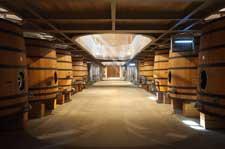 Cours d'œnologie - Bordeaux