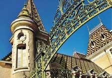 Séjour oenologie Bourgogne