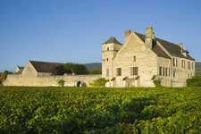 Dégustation de vins blancs - Meusault