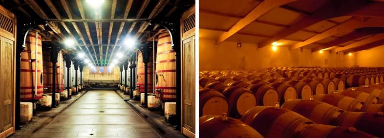 Découvrir des caves à vin