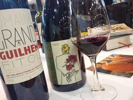 Languedoc-Roussillon wines from the Grand Guilhem Estate