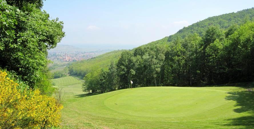 vin et golf en Alsace