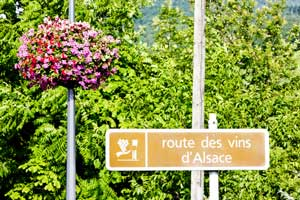 itinéraire route des vins Alsace