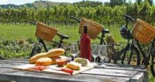 Week-end dans le vignoble champenois