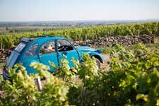 Escapade in a 2CV car in the vines in Champagne