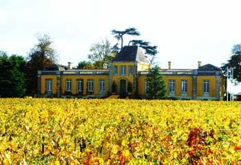 Séjour vin Saint-Estèphe