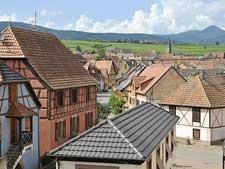 Atelier vignerons Alsace