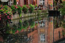 Découverte vins biologiques Alsace