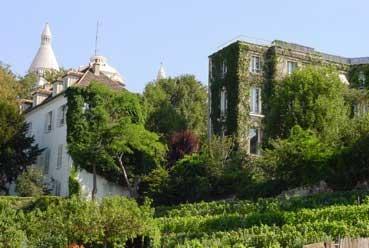 Route des vins Ile-de-France