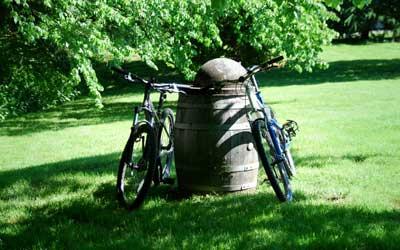 Route des vins Alsace à vélo