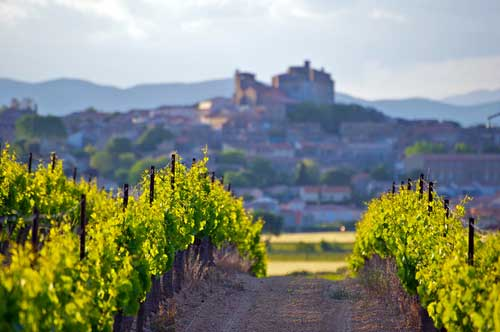 The Languedoc-Roussillon wine route