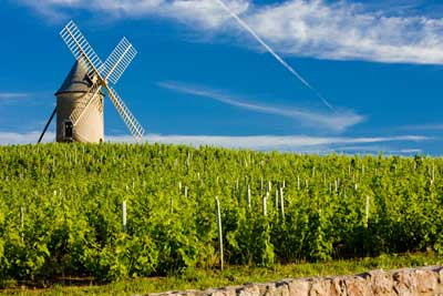 The Rhone Valley wine route