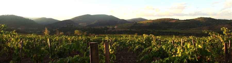 Route des vins de Corbières