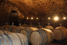 Cellar on the Anjou wine route