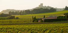 Drôme vineyard