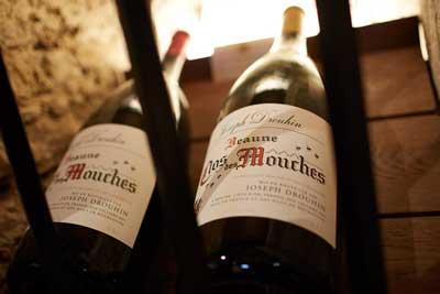 Tourisme route des vins Bourgogne