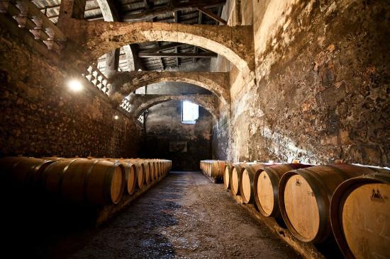 Visite de caves à vin