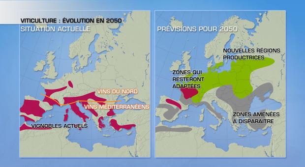 Zone viticole en Europe