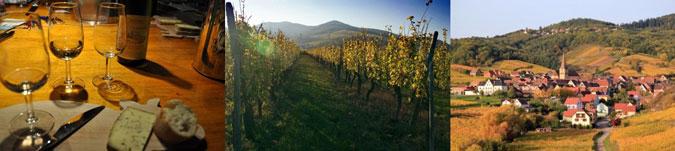 Cadeau route des vins alsace