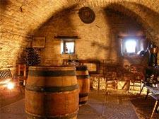 Séjour vigneron en Bourgogne