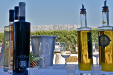 Provence wine and olive oil tasting