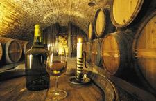 Dégustation des vins du Jura
