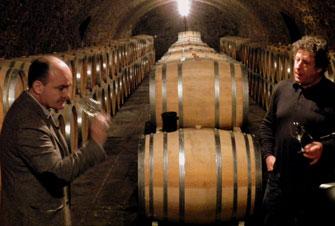 Dégustation de vin à la propriété