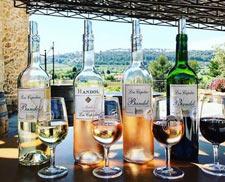 Bandol wines tasting