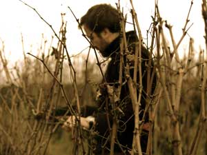 Thierry Germain from the Domaine des Roches Neuves