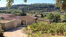 Domaine Lou Capelan, wsine estate near Bandol