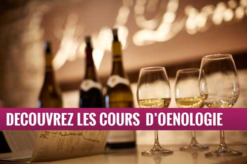Oenologie - Cours dégustation